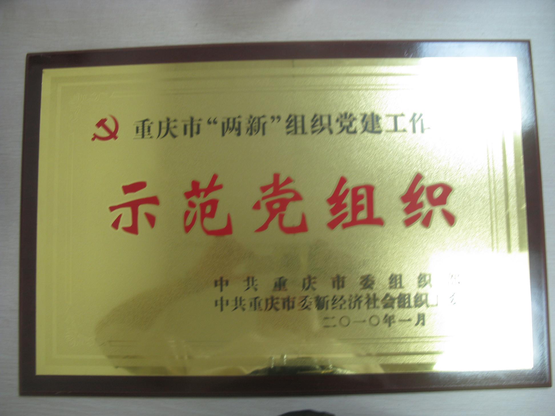 示范党组织-重庆爱尔眼科医院